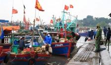 Quận Đồ Sơn: Giá trị sản xuất thuỷ sản tăng 11,48%
