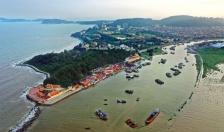 Quận Đồ Sơn: Tổng sản lượng nuôi trồng thủy sản đạt 4.220 tấn