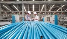 Công ty CP Nhựa Thiếu niên Tiền Phong: Những tấm gương đẹp trong lao động, sản xuất
