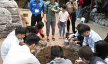 Huyện đoàn Tiên Lãng: Đồng hành với thanh niên trong lập thân, khởi nghiệp