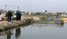 Ngân hàng Chính sách xã hội chi nhánh Hải Phòng: Tìm hiểu nhu cầu vay vốn phát triển sản xuất tại huyện Kiến Thuy