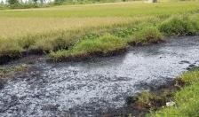 Tập trung xử lý 3 vị trí mương có chất thải độc hại gây bỏng cho người dân xã Hưng Nhân, huyện Vĩnh Bảo
