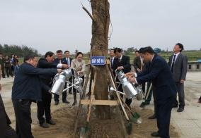 Thành phố phát động Tết trồng cây xuân Mậu Tuất 2018