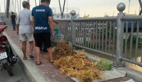 Bán hàng trên cầu Niệm gây mất mỹ quan đô thị