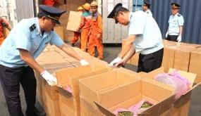 Khen thưởng Hải quan Hải Phòng trong vụ bắt giữ 2,6 tấn lá Khát