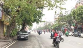 Đường phố Hải Phòng ngày thứ 8 thực hiện cách ly toàn xã hội: Mọi người không nên chủ quan